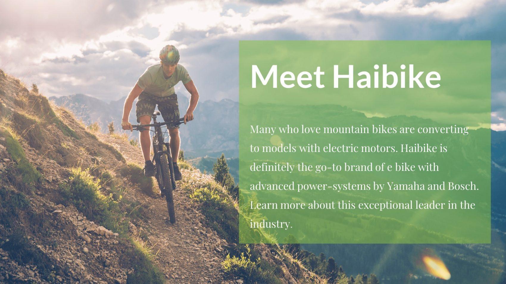 haibike-electric-bikes-buy-online